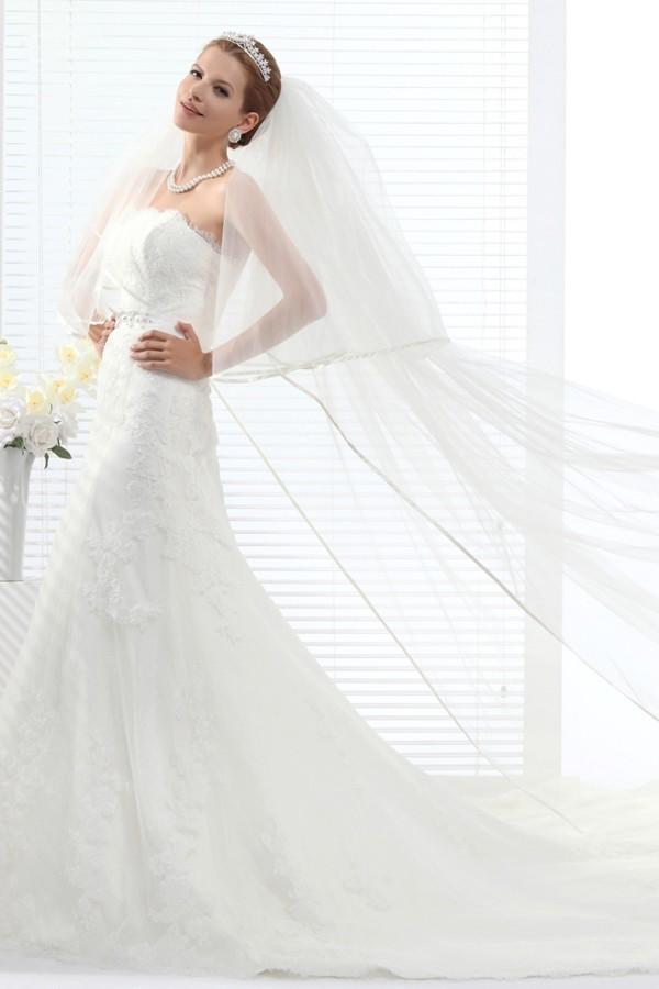 Ivory Chapel Train 1 Layer Bridal Veil Ac1279