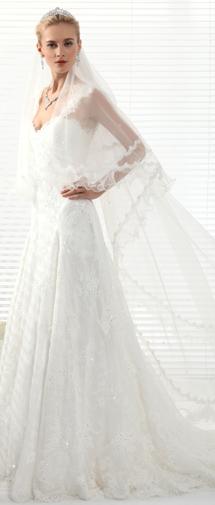 Ivory Chapel Train 1 Layer Bridal Veil Ac1276
